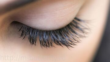 IMG_1393_sashas-lashes-luke-copy